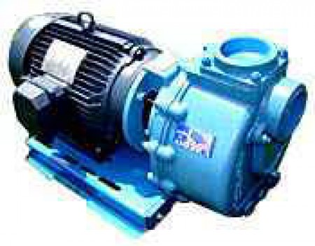 """5 HP Three Phase Electric Cast Iron Transfer Pump -  2"""" NPT Inlet x 2"""" NPT Outlet"""