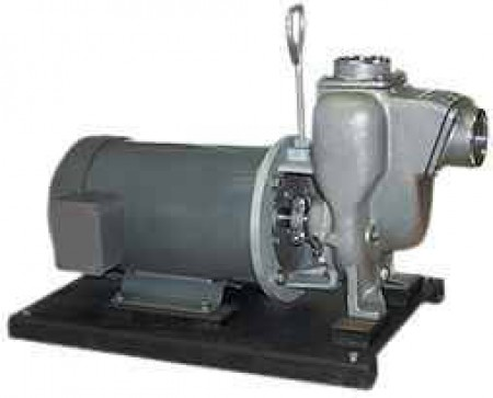 "5 HP Single Phase Electric Engine Stainless Steel Pump with 2"" NPT"