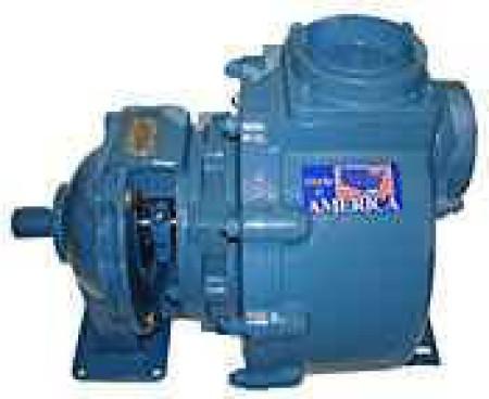 "5 HP Cast Iron Transfer Pump -  2"" NPT Inlet x 2"" NPT Outlet"
