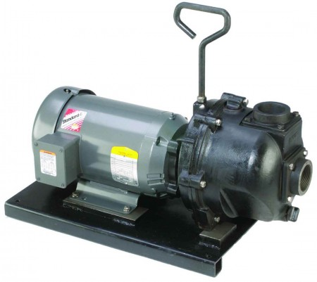 "5 HP Single Phase Electric Engine Cast Iron Pump with 2"" NPT"