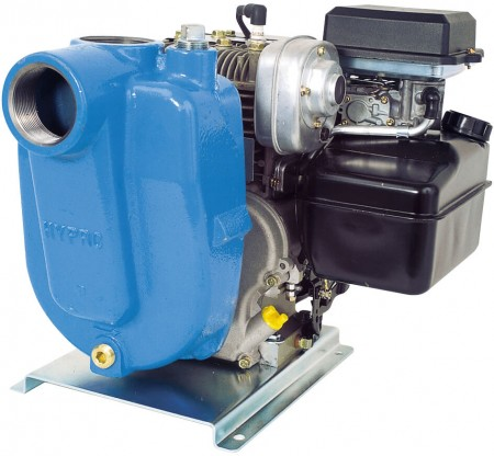"""5.5 HP Briggs & Stratton Gas Cast Iron Centrifugal Pump with 2"""" NPT Inlet x 2"""" NPT Outlet"""