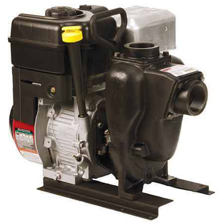 "6.5 HP Briggs & Stratton Gas Engine Cast Iron Pump with 2"" NPT"