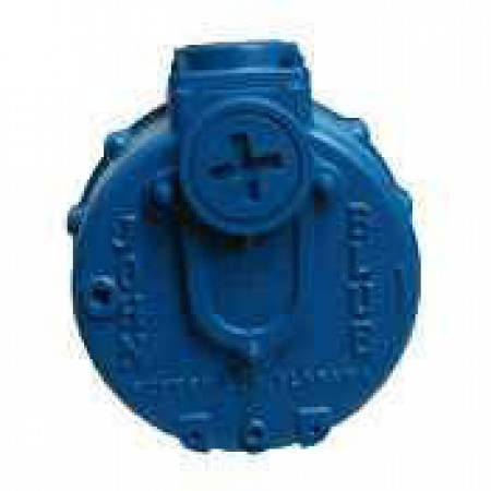 "5 HP Gas Cast Iron Transfer Pump -  2"" NPT Inlet x 2"" NPT Outlet"