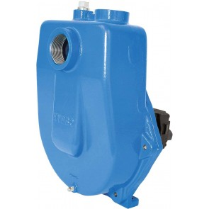 "Hydraulic Cast Iron Centrifugal Pump with 2"" NPT Inlet x 2"" NPT Outlet"