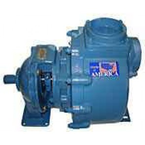 "10 HP Cast Iron Transfer Pump -  3"" NPT Inlet x 3"" NPT Outlet"