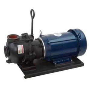 """5 HP Three Phase Electric Engine Cast Iron Pump with 2"""" NPT"""
