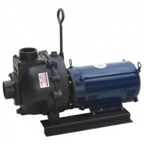 "15 HP Three Phase Electric Engine Cast Iron Pump with 3"" NPT"