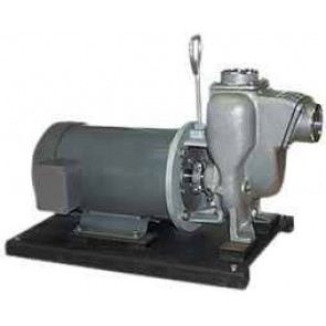 "5 HP Three Phase Electric Engine Stainless Steel Pump with 2"" NPT"